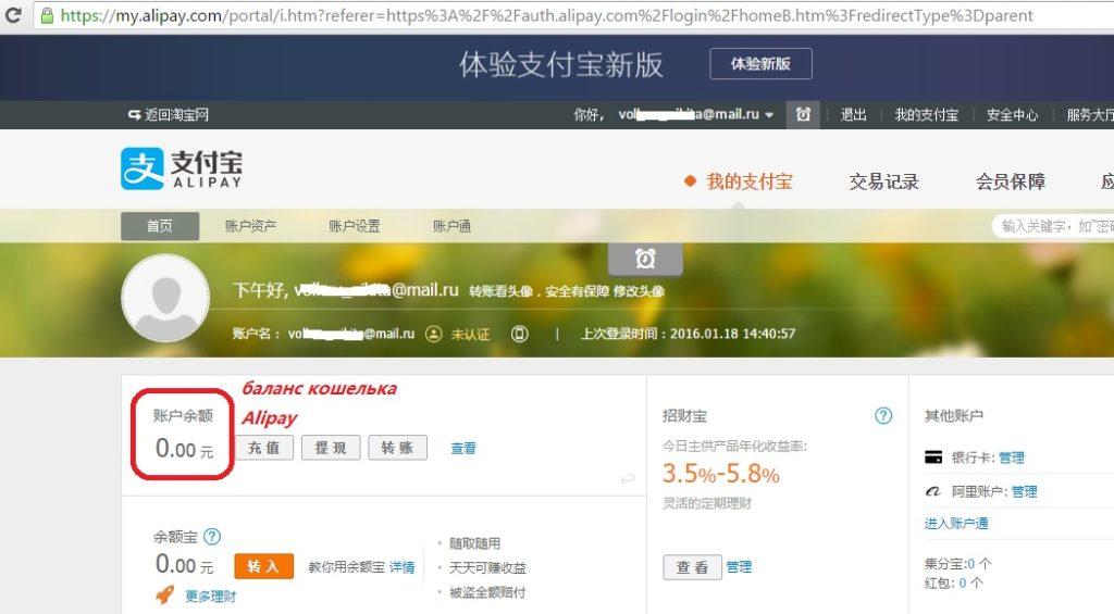 Alipay_1 (1)